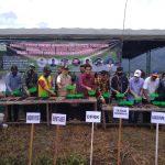 Aceh Besar Semai Benih Perdana Musim Tanam Gadu 2020
