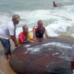 Nelayan Tradisional Abdya Panen Udang Rebon